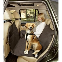 Tutti gli accessori indispensabili per un viaggio col cane