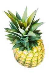monge monoproteico pollo riso e ananas