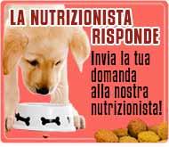 La Nutrizionista animale risponde - Invia la tua domanda - Consulenza gratuita
