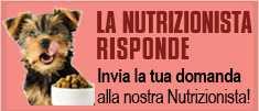 La Nutrizionista Animale risponde, invia la tua domanda! Consulenza gratuita