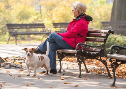 Binomio Cane E Anziano, Benefici Per Entrambi