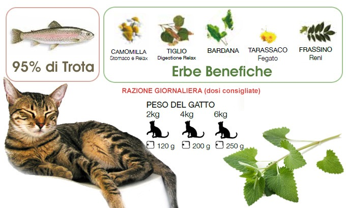 cibo umido per gatti naturale Trota con Erba Gatta Dalla Grana