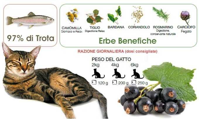 cibo umido per gatti naturale Trota con Ribes Nero Dalla Grana