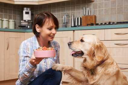 Diet Barf per cani o gatti, pro e contro