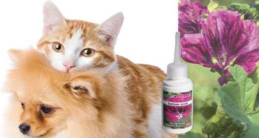 lozione pulizia occhi cane e gatto