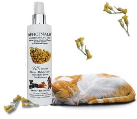 Igiene dei gatti, lo shampoo