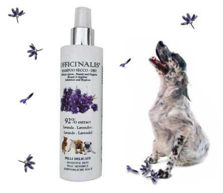 Shampoo a secco Lavanda per cani e gatti dalla pelle delicata