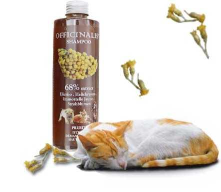 Shampoo Elicriso per cani e gatti con problemi di prurito cutaneo