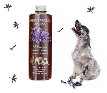 Shampoo Lavanda per cani con effetto repellente sugli insetti