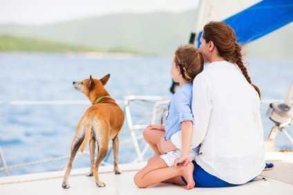 Anche le navi accettano ben volentieri i cani che viaggiano con il proprio padrone