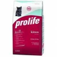 Il Prolife Kitten disponibile con sconto del 20%
