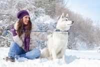 Le razze di cani più adatte alla compagnia