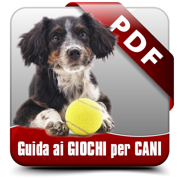 https://alimentianimalionline.it/2564-thickbox/guida-ai-giochi-per-cani.jpg