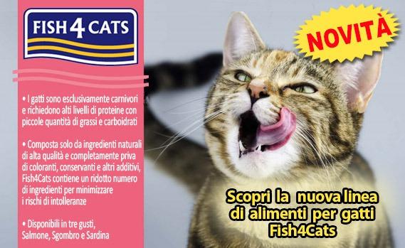 Novità Fish4Cats crocchette senza cereali per gatti