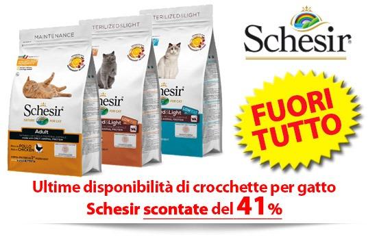 FUORI TUTTO crocchette gatto Schesir - SCONTO 41%