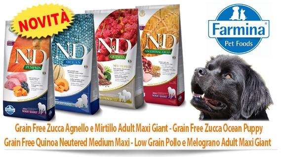 Novità Farmina Grain Free Zucca Agnello/Mirtillo Adult Maxi Giant - Grain Free Zucca Ocean Puppy - Grain Free Quinoa Neutered Medium Maxi - Low Grain Pollo e Melograno Adult Maxi Giant