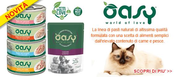 novità per il tuo gatto, il cibo umido Oasy