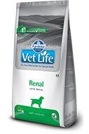Farmina Vet Life Renal secco cane 12 kg