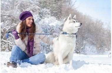 La nuova frontiera nell'alimentazione del cane con la ricerca Nutrigenomica studiata da Prolife