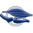 crocchette Monge Senior Cane Superpremium - Glucosamina, Condroitina, Calcio e Fosforo per il corretto sviluppo e il benessere di ossa e articolazioni