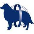crocchette Monge Senior Cane Superpremium - L-Carnitina per il controllo del peso