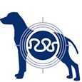 crocchette Monge Superpremium cane Senior Prebiotici naturali XOS Xilo Oligo Saccaridi per un intestino sano