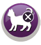 Monge SuperPremium Gatto Indoor alimentazione controllata per gatti sterilizzati