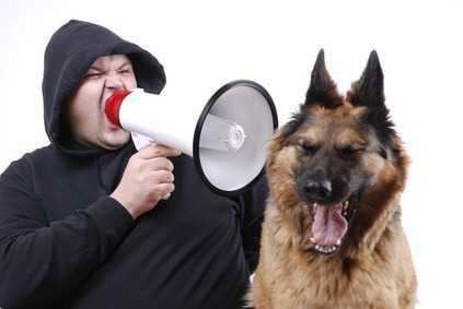 Educare il Cane - Il linguaggio del cane  (1a parte)