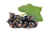 Dalla Grana Pura Natura - Frutta disidratata lamponi, mele, mirtilli e pere