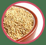 Farmina Quinoa