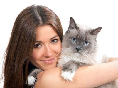 curiosità sui gatti, le fusa dei gatti