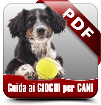 guida ai giochi per cani