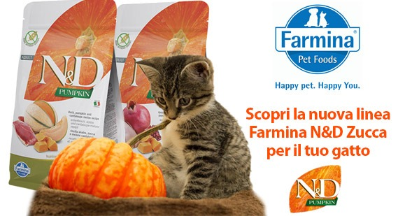 I benefici di frutta e verdura nelle nuove formule Farmina N&D Pumpkin Feline
