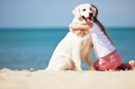 Come trattare l'allergia alimentare del cane, l'esempio di un Labrador