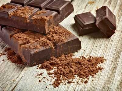 La cioccolata al cane o al gatto, alimento estremamente pericoloso