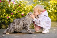 La convivenza fra gatti e bambini, consigli e suggerimenti