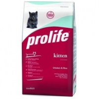 Il Prolife Kitten disponibile con sconto del 20%
