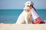 Vacanze con il cane, come gestirlo al mare