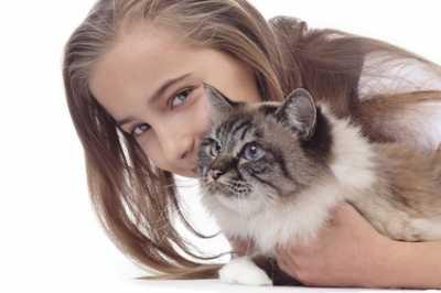 Calcolare l'età dei gatti