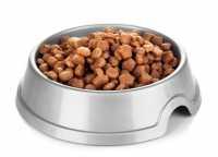 Alimentazione consigliata per cane con lacrimazione