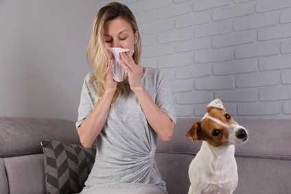 Allergia al pelo del cane: cani anallergici, sintomi e rimedi per l'allergia ai cani