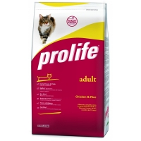 Crocchette Prolife gatto super scontate