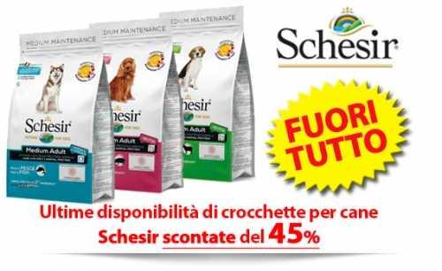 Crocchette Schesir per gatto e cane Ultime Disponibilità