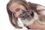 Gatto con insufficienza renale, cosa fare? Quale alimentazione? Esempio pratico