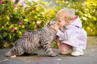Mettere l'antiparassitario all'olio di Neem al gatto in presenza di bambini è sicuro?