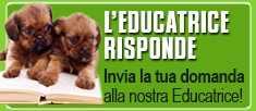 Nuovo servizio gratuito sull'educazione del cane - Scrivi alla nostra Educatrice