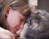 Perchè i gatti soprattutto anziani miagolano forte? Esempio pratico