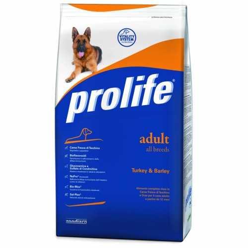 Prolife crocchette per cani mantenimento e Lifecat cibo per gatti scontati fino al 40% - Tanti articoli dal nostro Blog